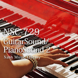 NSC-729 33-Guitar/Piano Sounds 2