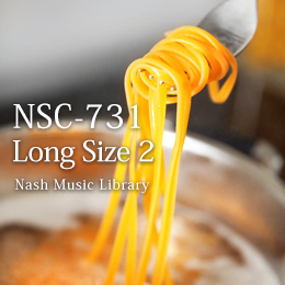NSC-731 35-Long Duration 2
