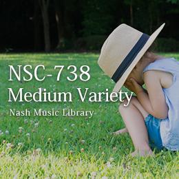 NSC-738 42-Medium Variety