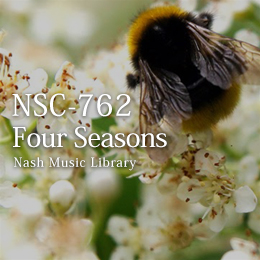 NSC-762 66-Four Seasons
