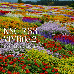 NSC-763 67-Video Titles 2
