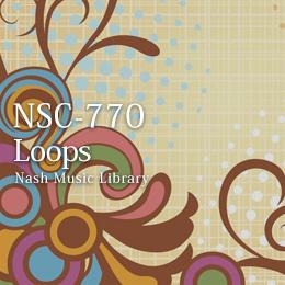 NSC-770 74-Loops