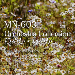 MN-603 Orchestra Collection Vol.5 (2)