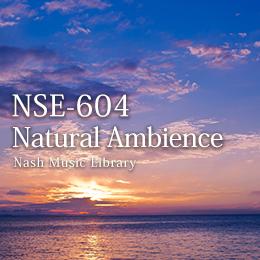 NSE-604 09-Natural Ambience