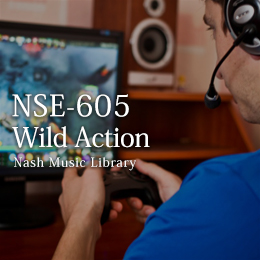 NSE-605 10-Wild Action