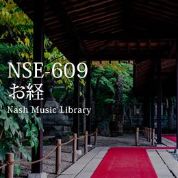 NSE-609 13(2)-お経