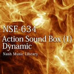 NSE-634 30(1)-Action Sound Box (1) Dynamic