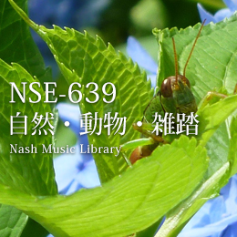 NSE-639 Nature/Animals/Exterior