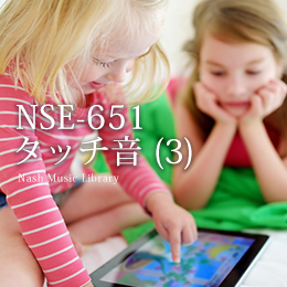 NSE-651 Touch Sounds (3)