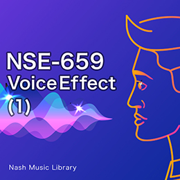 NSE-659 51-Voice Effect (1)