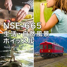 NSE-665 55-生活・自然風景・ホイッスル他
