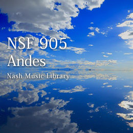 NSF-905 4-Andes