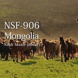 NSF-906 5-Mongolia