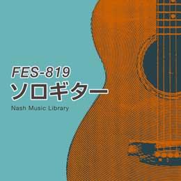 FES-819 19-Solo Guitar