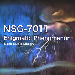 NSG-7011 11-Enigmatic Phenomenon