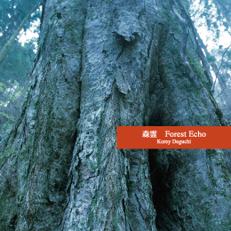 NS-1368 Kodama (Forest Echo)