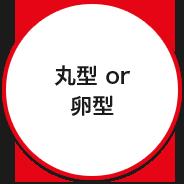 丸型 or 卵型