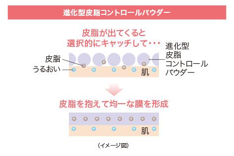 進化型皮脂コントロールパウダー イメージ