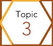 Topic3