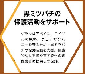 黒ミツバチの保護活動をサポート