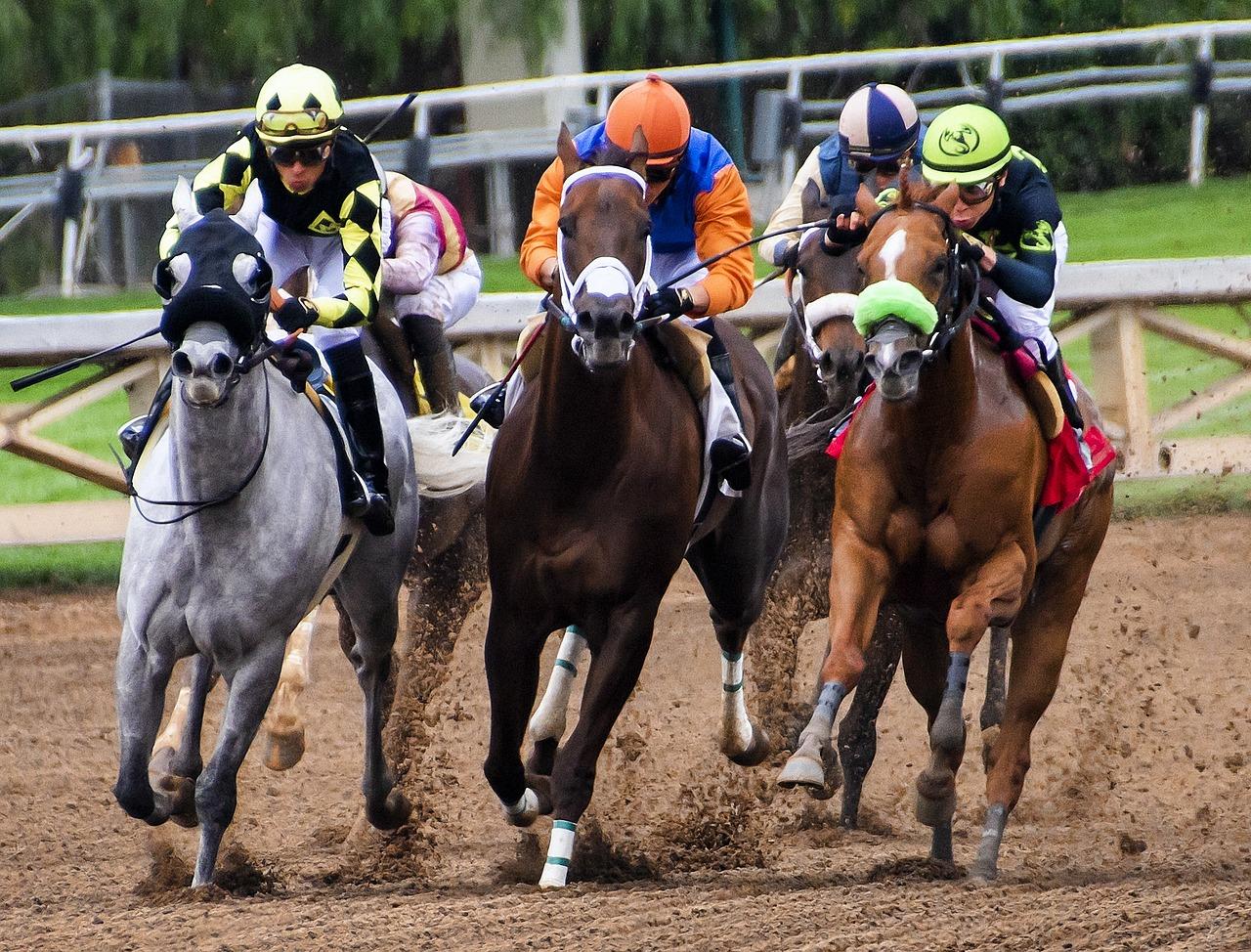 Sports spoit eyecatch horse racing rule