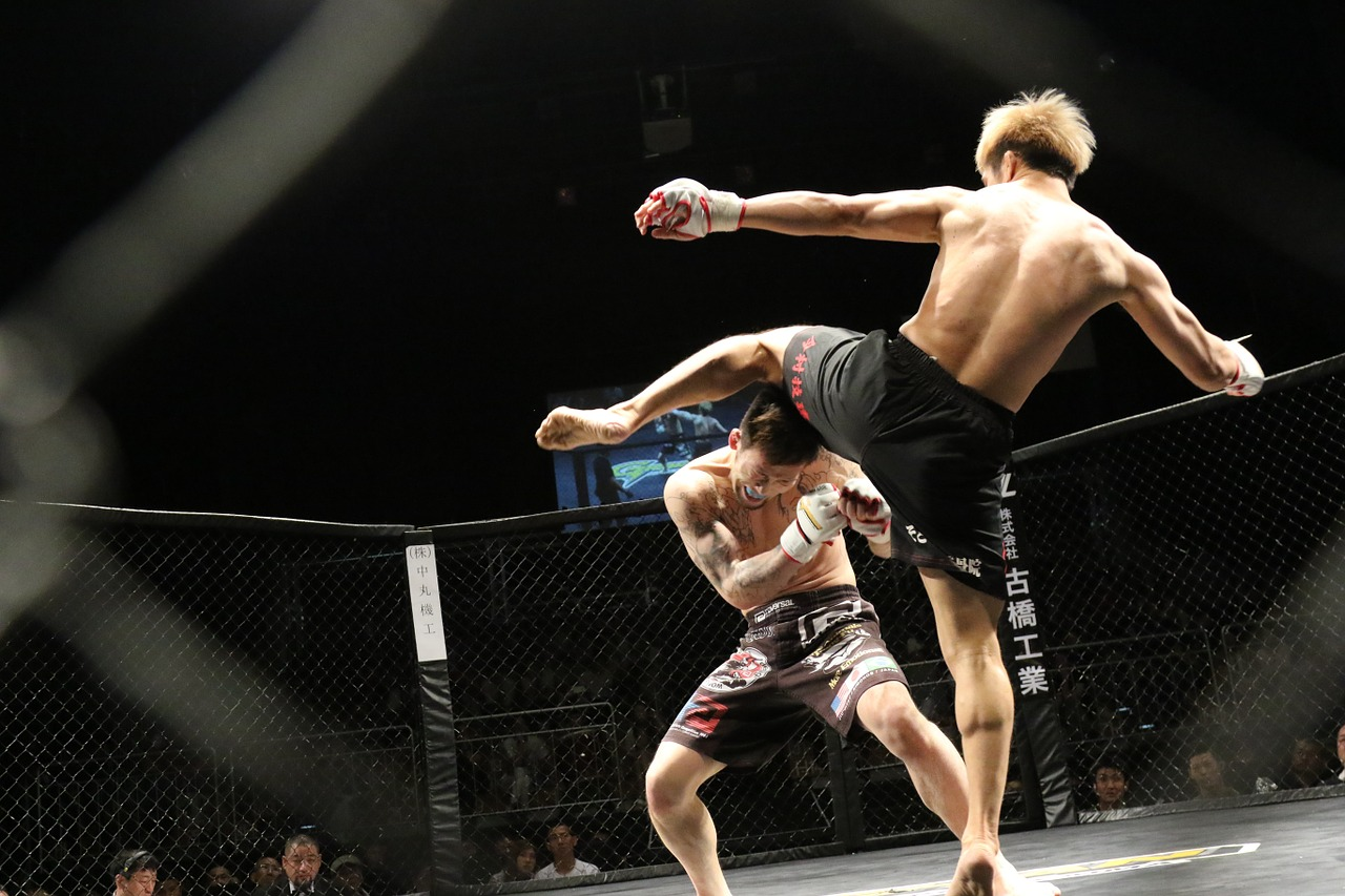 Sports spoit eyecatch mixed martial arts rule