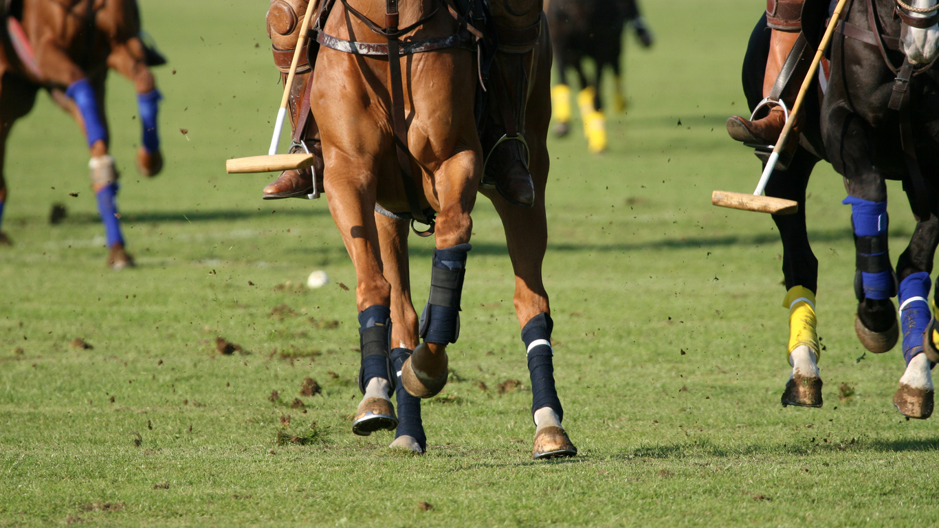 Sports spoit eyecatch polo rule