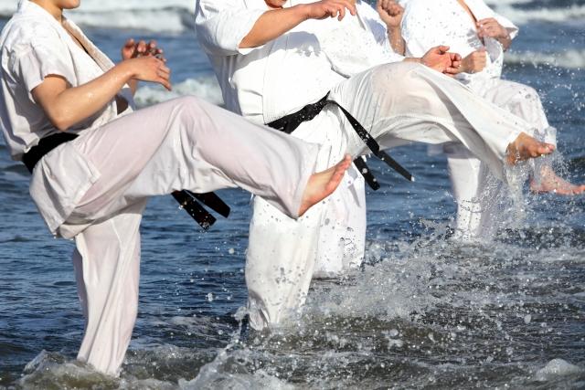 Sports spoit eyecatch syourinji kenpo rule