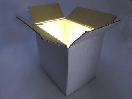 ビットコインによってパンドラの箱は開けられた。