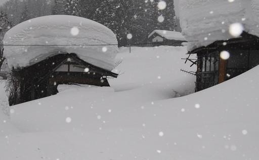 真冬の夜のお共に。【雪女のキス】アンソロジー