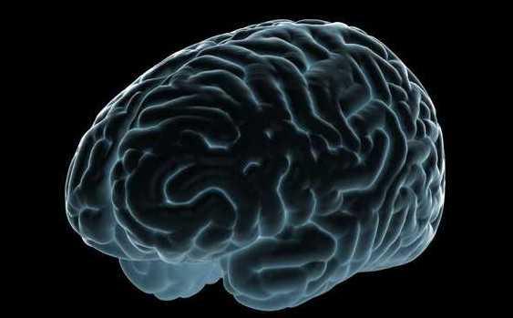あなたの脳が全てを物語る~秘密 THE TOP SECRET~