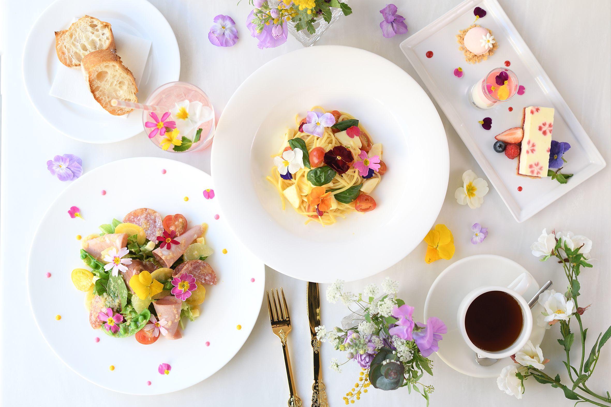 花満開、フォトジェニックなフラワーメニュー新登場 「Spring Flower Garden」開催!