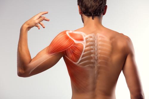 【肩のストレッチ】姿勢改善・疲労緩和・アンチエイジングに!