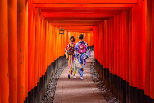 京都で楽しむ大人旅|フォトジェニックなおすすめ観光スポット8選