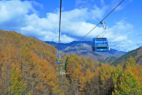 カップルで訪れたい新潟県の定番・穴場の観光スポットをご紹介