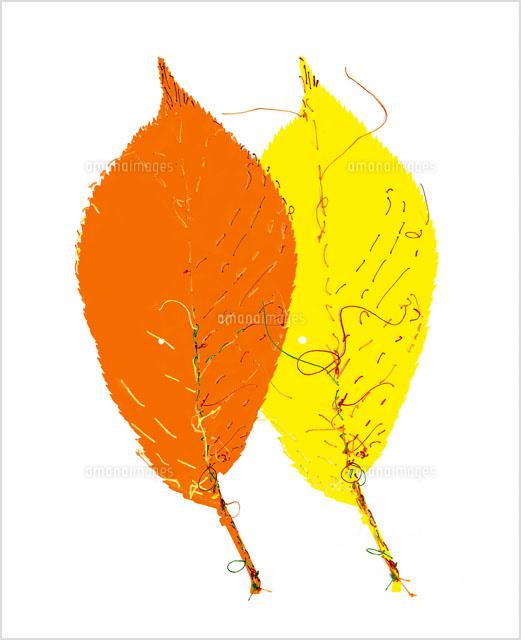 糸と枯れ葉00243010363の写真素材イラスト素材アマナイメージズ