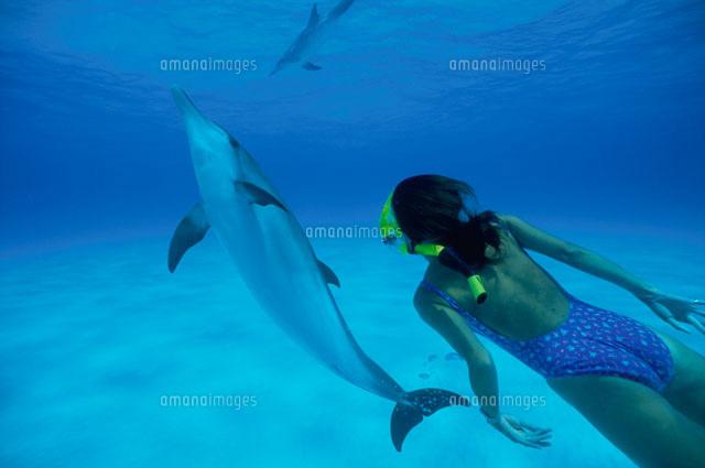 イルカと泳ぐ女性[00253010353]...