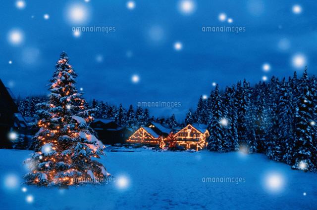 ツリーと家のクリスマスイルミネーション00299010197の写真素材