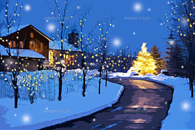 家への道と雪が降る夜のクリスマスツリー カナダ00299010442の写真素材