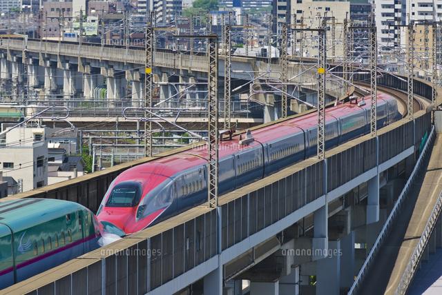 東京を走る秋田新幹線e6系こまちと東北新幹線e5系はやぶさ01071012185