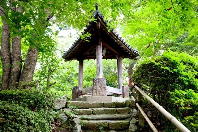 哲学堂公園の三学亭[01109091170...