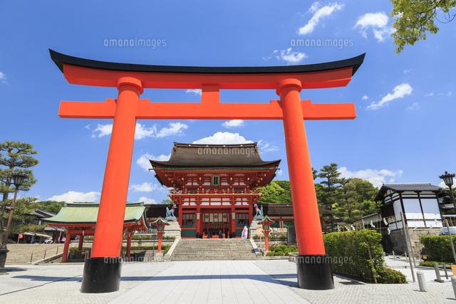 伏見稲荷大社 鳥居と楼門01216008037の写真素材イラスト素材アマナ