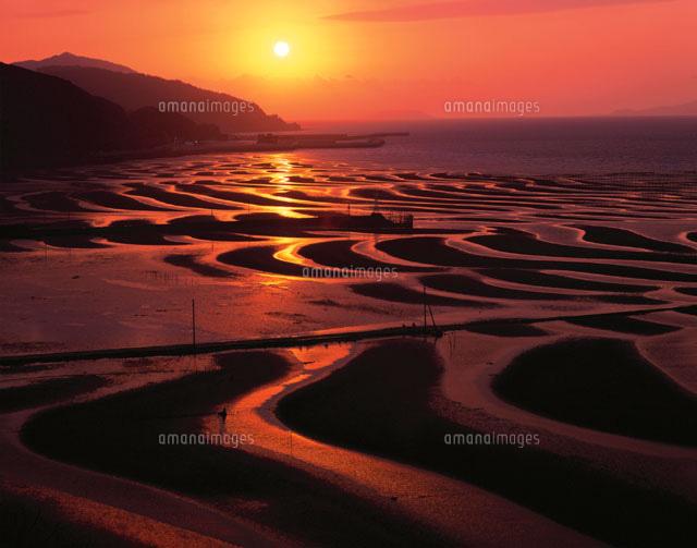 夕景の有明海の干潟 宇土市 熊本県