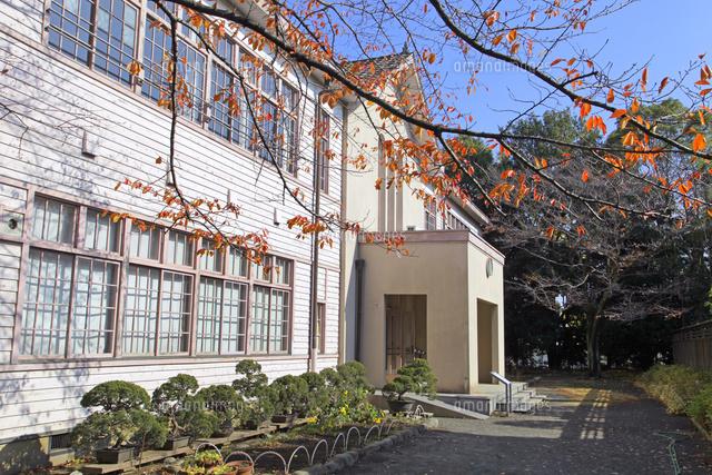 旧府中町立尋常高等小学校校舎01335035310の写真素材イラスト素材