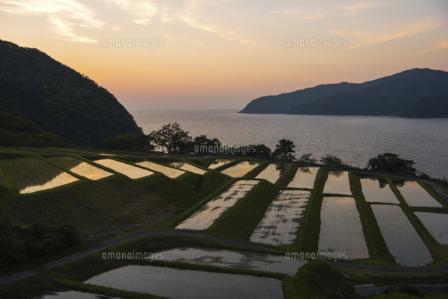 夕日の田島の棚田