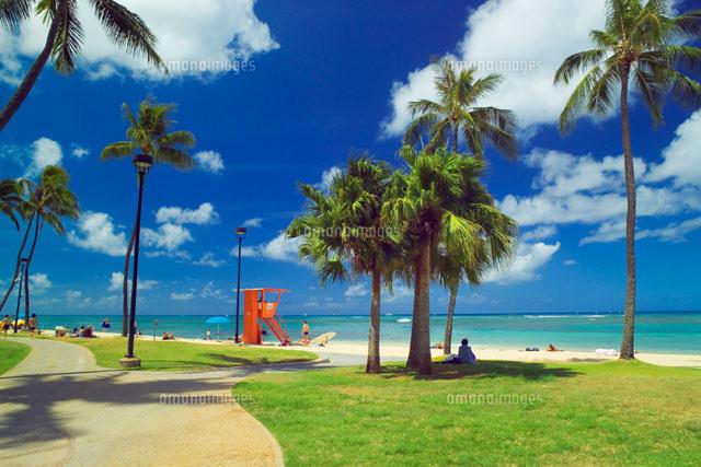 「ハワイ 無料素材」の画像検索結果