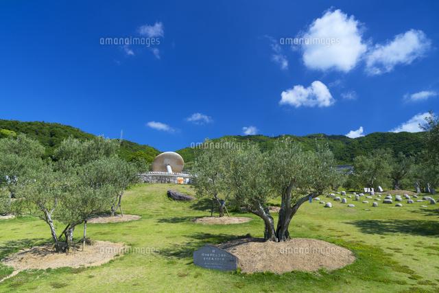 小豆島オリーブ公園[01597029491...