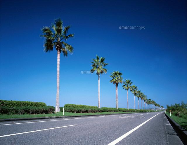 日南海岸への国道220号 宮崎県[0...