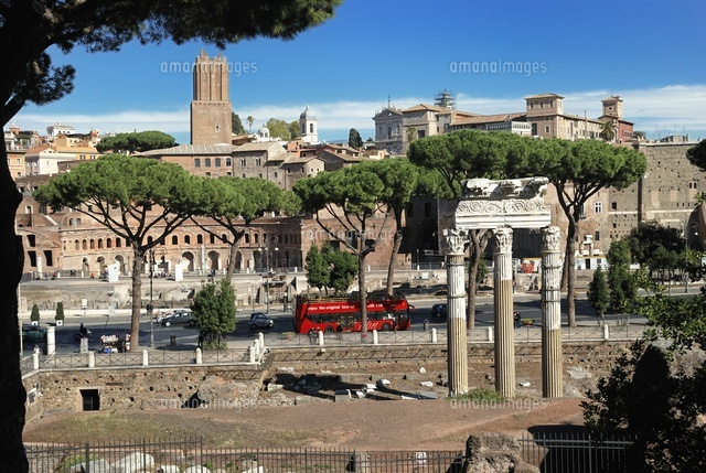 Cesar's forum. Columns of the temple of Venus Genetrix