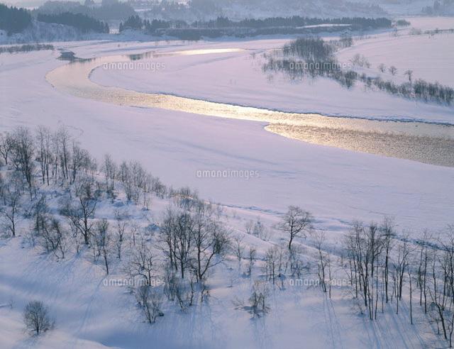 雪の信濃川の朝 小千谷市 新潟県...